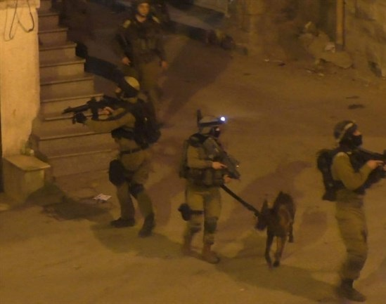 Israeli forces detain 5 Palestinian family members during northern West Bank raid