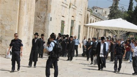 131 settlers storm Al-Aqsa mosque yards, Sunday
