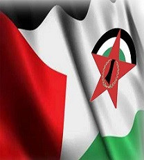 DFLP calls on the French, British and UN positions to build on them towards practical and effective steps and pressure on the occupation