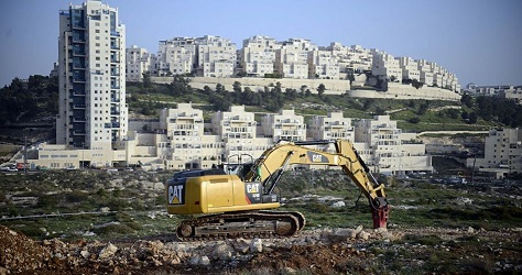 Petition for establishing new settlement near Ma'ale Adumim