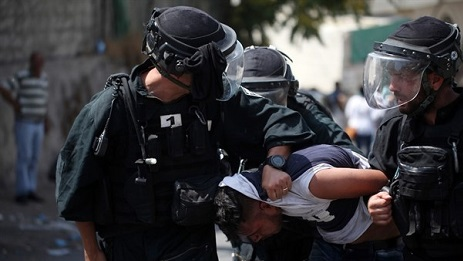 Israeli forces detain 13 Palestinians, including woman