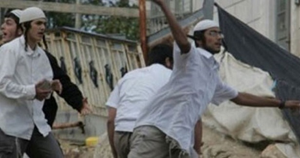 Settlers attack Palestinian property in southern Nablus
