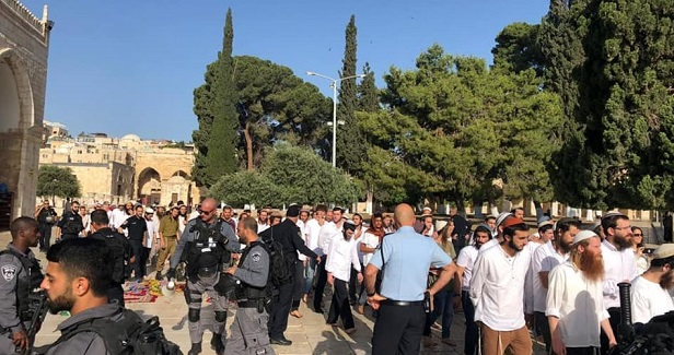 Dozens of settlers defile Aqsa Mosque