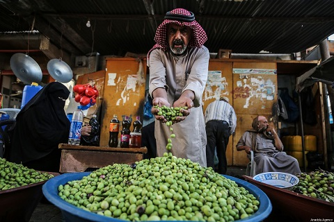 Gaza is self-sufficient in olive oil production, says ministry