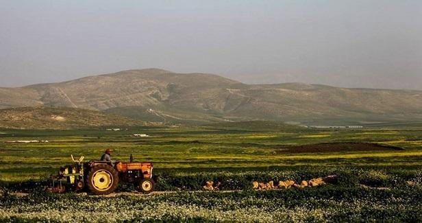 Israeli army maneuvers distort Palestinian beauty
