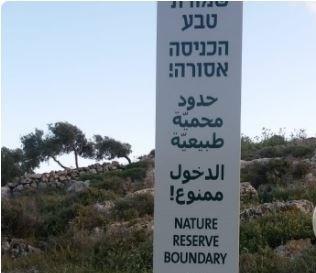 Israel turns hundreds of dunams into nature reserve near Nablus