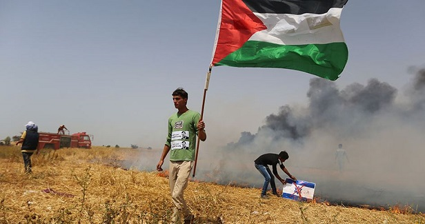 Palestine is Not a Lost Cause – and This is Why