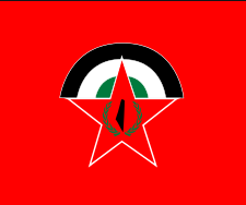 A statement of solidarity from the European region and the external branches of the DFLP with the brotherly Lebanese people