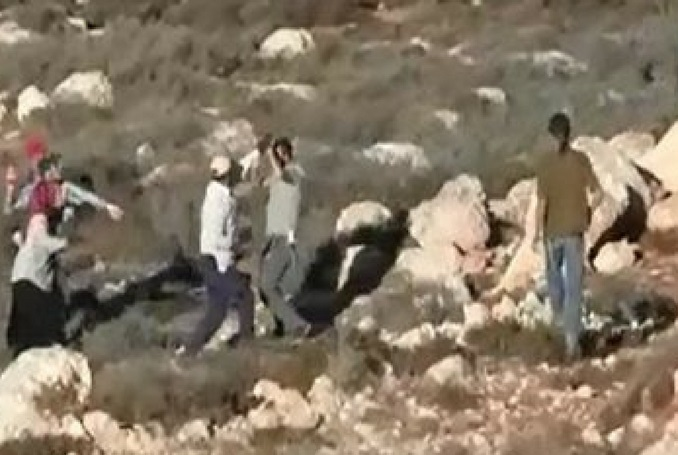 Israel to Confiscate Private Palestinian Land in Einabous, Nablus