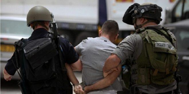 IOF releases child prisoner and detains 6 citizens, settler attacks child