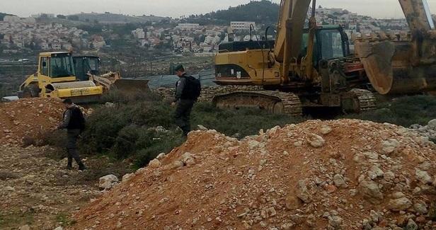 IOF destroys grape field in Halhul town