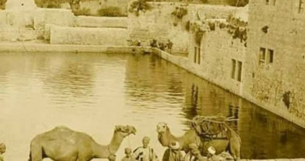 Sultan's Pool in Al-Khalil