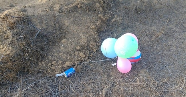 Incendiary balloons land in southern Israel