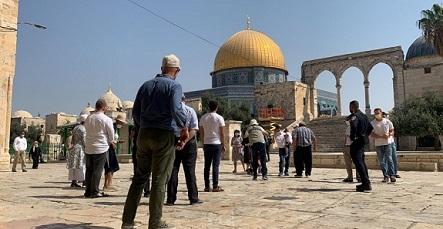 124 مستوطنًا يقتحمون المسجد الأقصى
