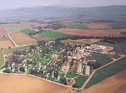 قرية الزوية