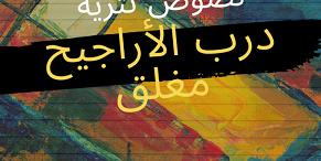 حسن العاصي… شاعر يربّي عشق الانتماء بروح مغتربة