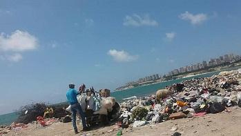 شاطئ مخيّم الرمل مكبّ للنفايات وشكاوى من انتشار الحشرات والجرذان