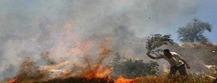 اندلاع حريق في أحراش