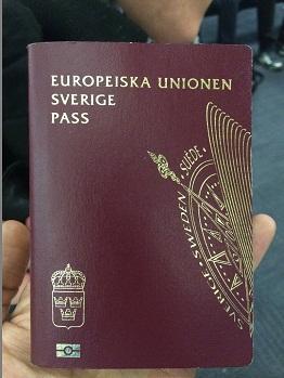 عشرات اللاجئين من فلسطينيي سورية يحصلون على الجنسية السويدية والهولندية