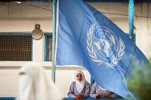 أبو حسنة: أوضاع اللاجئين الفلسطينيين تتدهور وهناك ضغوط هائلة على