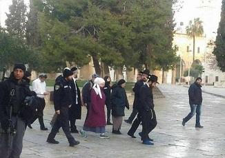 عدد من المستوطنين يقتحمون المسجد الاقصى