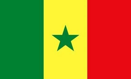 سفير السنغال في باريس: موقفنا ثابت في دعم القضية الفلسطينية