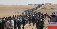 مسيرات العودة كشفت فشل إسرائيل استراتيجيا