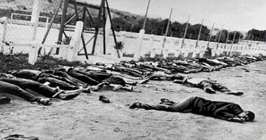 مجزرة طنطورة.. ذكريات القتل والإرهاب الإسرائيلي