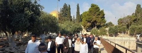 مستوطنون يواصلون اقتحام ساحات الأقصى بحراسة شرطة الاحتلال