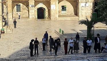 مستوطنون يقتحمون ساحات المسجد