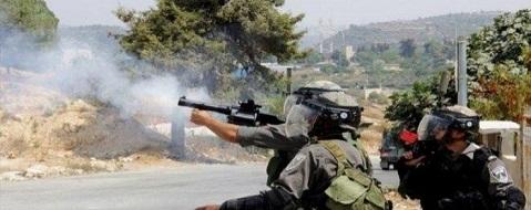 قوة كبيرة من جيش الاحتلال تقتحم شرق قلقيلية بحجة ملاحقة مطلوبين