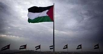 المجتمع الدولي والقضية الفلسطينية: نظرة مستقبلية