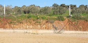 فتحات الجدار.. عندما يدخل أهالي الضفة أراضي 48 رغم أنف الاحتلال