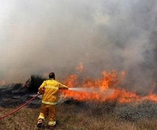 اشتعال النيران في الأحراش شرق غزة